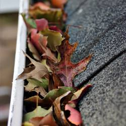 Clogged gutters filled with fall leaves  in Kellogg