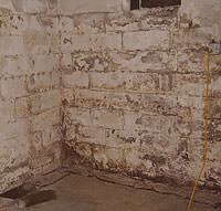 Peeling, Chipping, Basement Wall Coatings in Spirit Lake